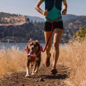 Ruffwear Runner Bungee Dog Leash